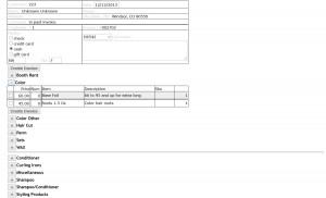 invoice2900